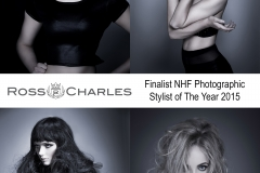 NHF stylist of the year finalist poster 1-23